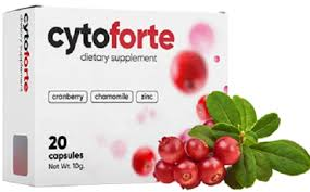 Cyto forte - preis - test - Nebenwirkungen