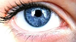 Optivision - besseres Sehvermögen - bestellen - Amazon - preis