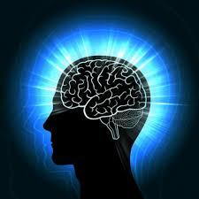 Neurocyclin - in apotheke - Nebenwirkungen - bestellen