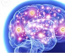 Neurocyclin - Deutschland - forum - Aktion