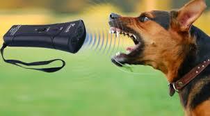 BarXBuddy - Hundeabwehrmittel - forum - preis - Aktion