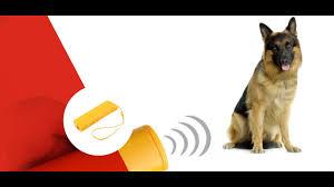 BarXStop - Hundeabwehrmittel - kaufen - in apotheke - erfahrungen