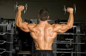 Truflexen Muscle Builder - für Muskelmasse - Nebenwirkungen - Aktion - Deutschland