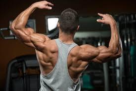 Truflexen Muscle Builder - in apotheke - forum - test