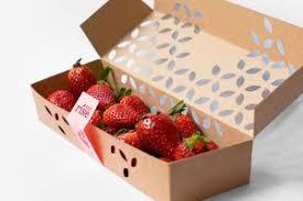 Home Berry Box - hausgemachte Erdbeeren - test - bestellen - Amazon