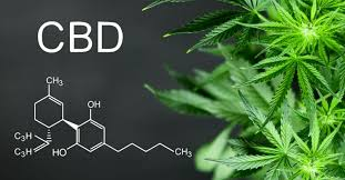 Annabiol CBD - forum- erfahrungen- test