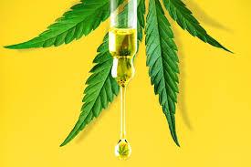 Greenboozt CBD Oil – bessere Laune - test – forum – preis