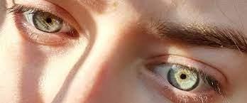 Oculax – besseres Sehvermögen - Aktion – Deutschland – Nebenwirkungen
