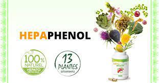Hepaphenoln - in apotheke - kaufen - bei dm - in deutschland - in Hersteller-Website