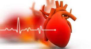 Cardione - Stiftung Warentest - erfahrungen - bewertung - test